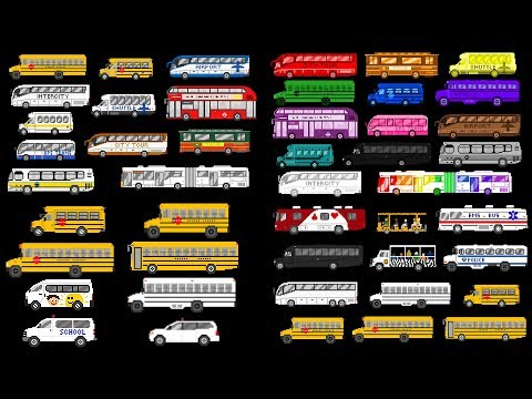 Buses Collection - School Buses, Bus Colors & More - The Kids' Picture Show (Fun & Educational)