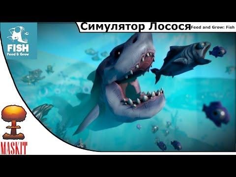 видео: Симулятор Лосося в feed and grow: fish | Первый и Последний взгляд