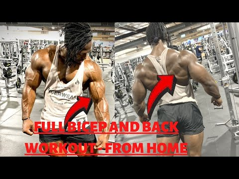 BEST Home Workouts For Muscle GAIN - The Perfect Home Workout (SETS and REPS INCLUDED)- BACK +BICEPS
