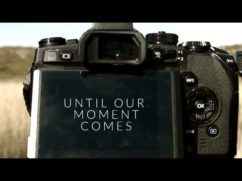 We wait - a homage to the wildlife photographer