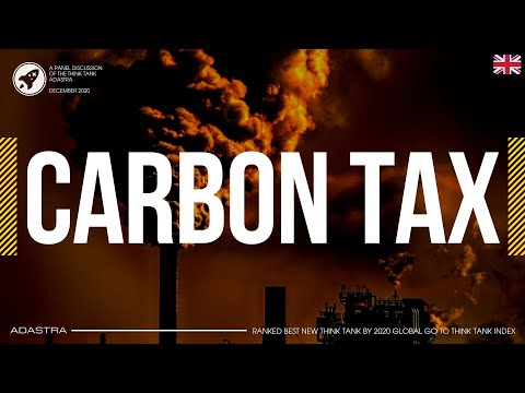 """Panel discussion """"Ukrainian Emissions Trading System: an alternative to the carbon tax"""""""