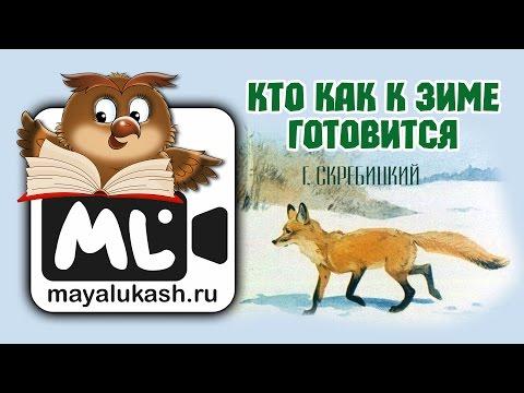 Кто как к зиме готовится  Зимние рассказы для детей