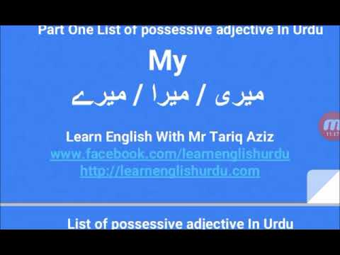 Possessive Adjectives in English Grammar ~ Kids And Parents Series Part 07