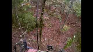 Bowhunting Whitetails at Triangle B Acres in North Alabama