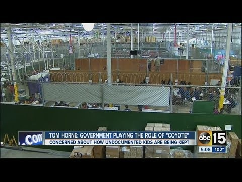 Arizona Attorney General Tom Horne says Government playing role of 'coyote'
