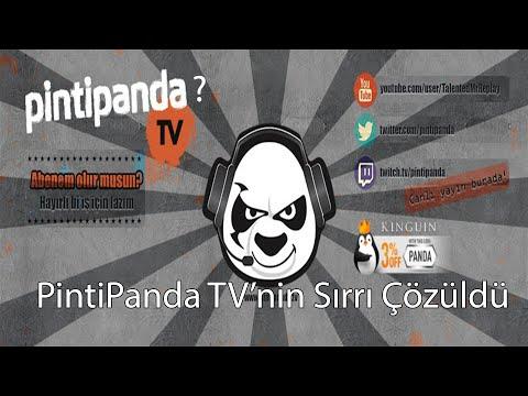PintiPanda Deşifre| Tuna