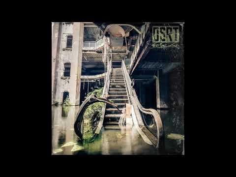 DSRT - The Last Wave (2021) (New Full Album)