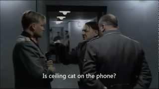 Hitler phones the Ceiling Cat