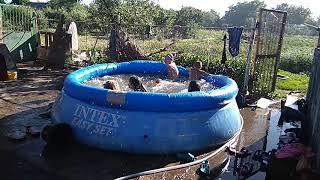 День рождения Кольки, дети купаются в бассейне