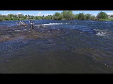 Fly Fishing The Henry's Fork