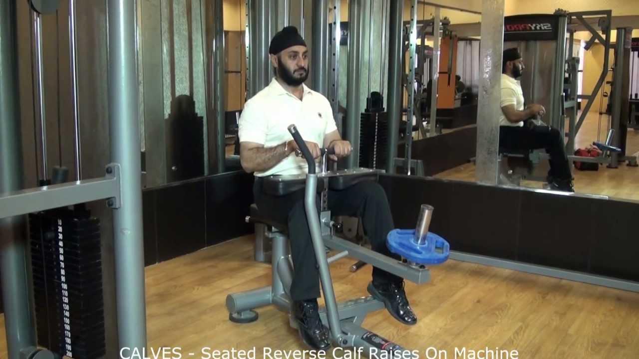 CALVES  Seated Reverse Calf Raises On Machine  YouTube