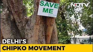 Delhi Residents Win Battle To Save Trees, For Now