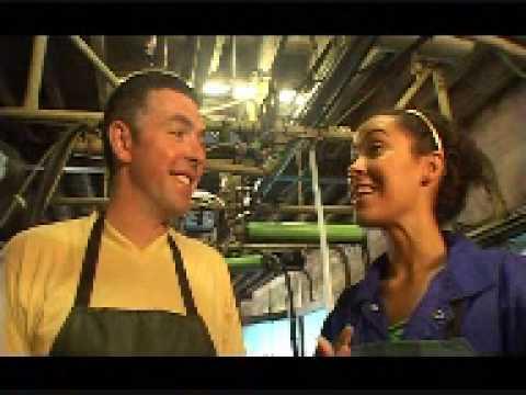 Ice Cream Farm Cheshire  Hollyoaks star takes to the farm  Cow milking