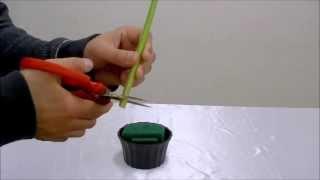 花のトッププロが教えるフラワーアレンジ基本#1必見!全てはここから始まりますflower arrangement