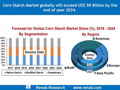 Corn Starch Market globally will exceed US$ 50 Billion by the end of year 2024