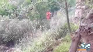 Minervino Murge - Incendio di sterpaglie in via Mentana