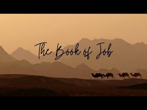Job Bible Study Part One