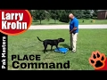 Teaching The Place or Send Away Command / Pak Masters Dog Training / Nashville, Bowling Green