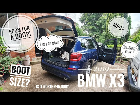 *3 MONTHS* with a 2019 BMW X3 - Ownership Update!