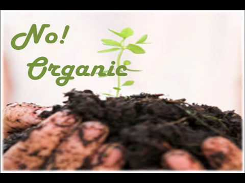 SP1202 New Media Assignment (Organic Food Controversy).wmv