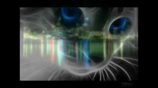 [HD] TECHNO TRANCE [2000 - 2012] Slyder - SCORE-NEO (the one) [mix]
