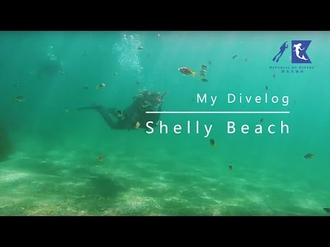 My Divelog - Shelly Bay - Sydney Diving