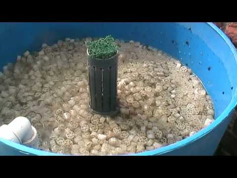 Diy homemade pond filter that works by tel part 2 for Best homemade pond filter media