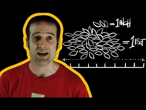 Are Imperial Measurements outdated?   Number Hub with Matt Parker   Head Squeeze