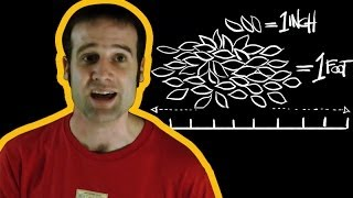 Are Imperial Measurements outdated? | Number Hub with Matt Parker | Head Squeeze