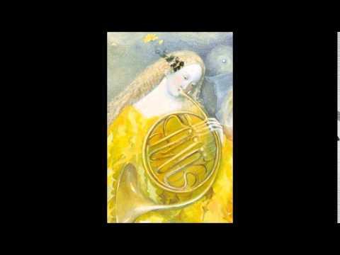 F. Antonín Rössler-Rosetti Horn Concerto in D minor C38/K III:43,  Radek Baborak