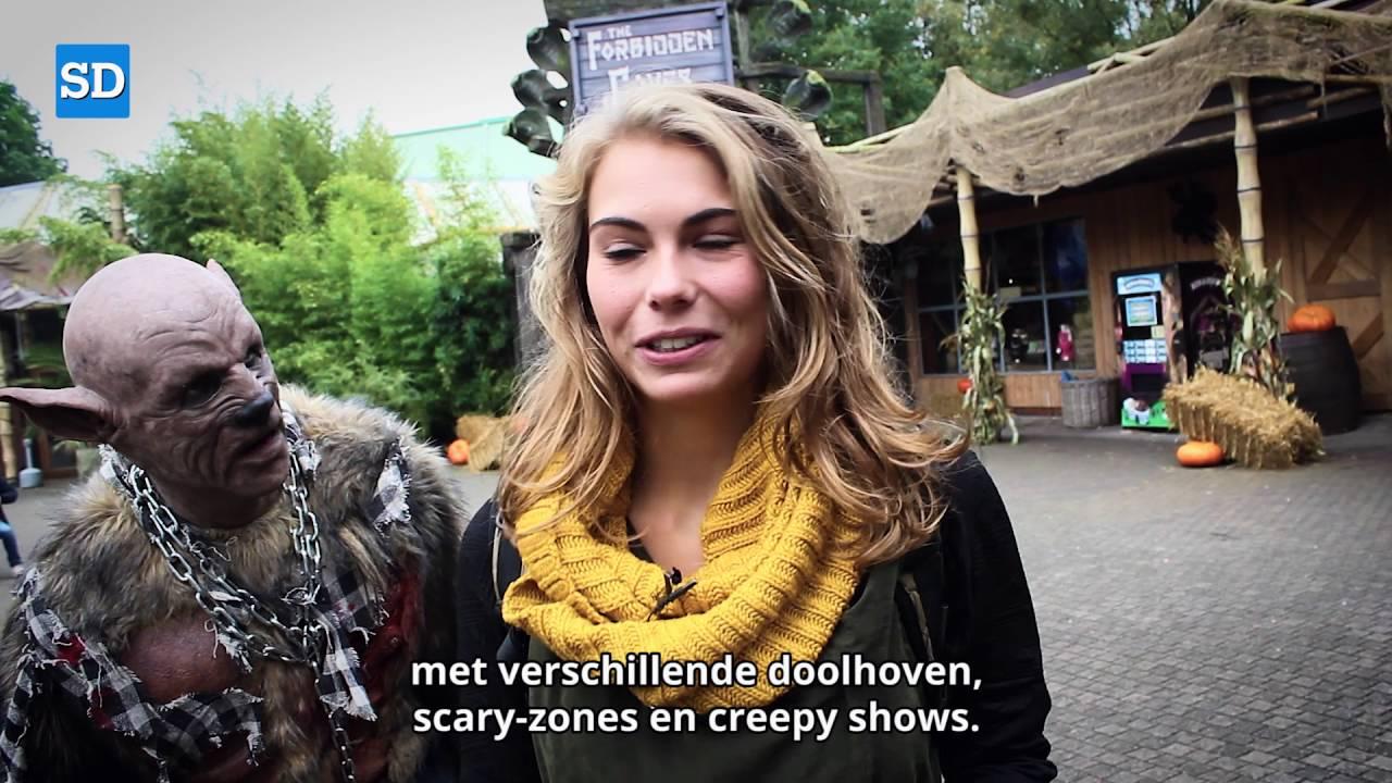 Bobbejaanland Halloween.Bobbejaanland Halloween 2016 In Kasterlee Net Over De Grens