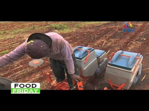 Agriculture conservation in Laikipia county