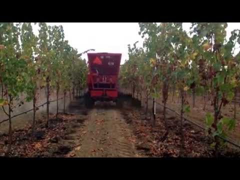 Saint Helena Agricultural Services is your source for vineyard equipment. Contract Sig 7074954157