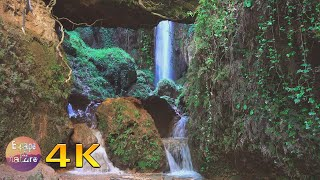 Calming nature sounds of a soothing waterfall with forest bird song-Relaxing Meditation-4K video