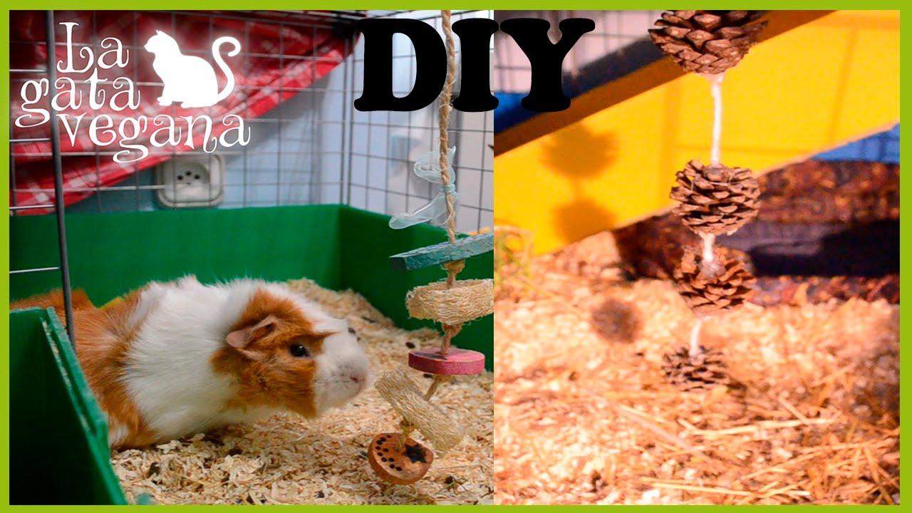 Juguetes colgantes caseros para cobayas conejos y chinchillas hazlo t mismo youtube - Juguetes caseros para conejos ...