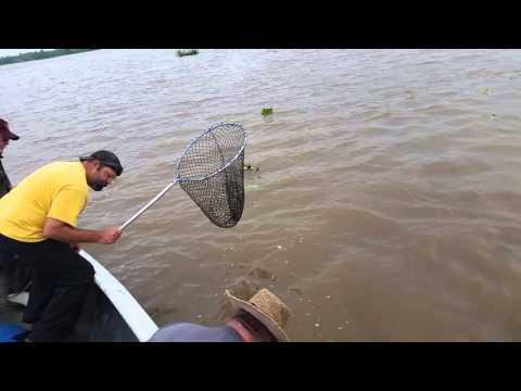 Wanous men catfishing in extreme south Louisiana Morgan City