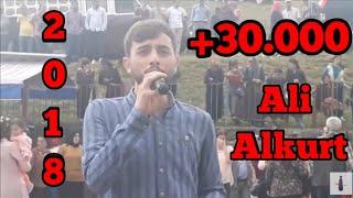 Ali Alkurt Horon 11