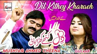 Download Lagu Dil Kithay Kharayai Gulaab Mushtaq Ahmed Cheena New Punjabi Saraiki Song 2020 Latest MP3