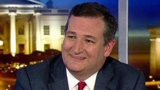 Ted Cruz: How we can make