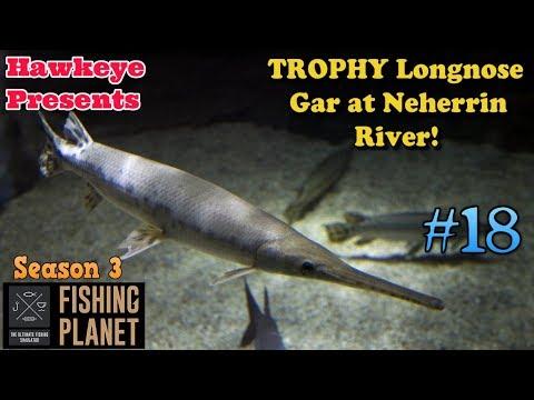 Fishing Planet   #18 - S3   Trophy Longnose Gar At Neherrin River!