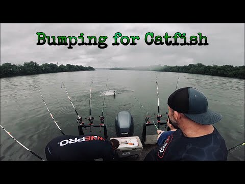 Bumping For Catfish On The Tennessee River