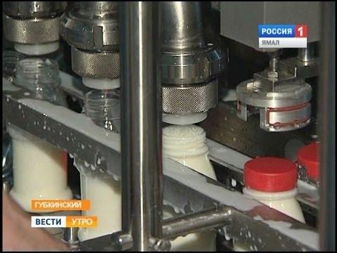 Губкинцы могут не беспокоиться за качество молочной продукции