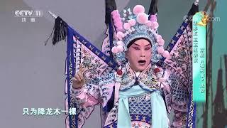 [梨园闯关我挂帅]京剧《穆柯寨》选段 表演:胡彩虹 王玉玺| CCTV戏曲