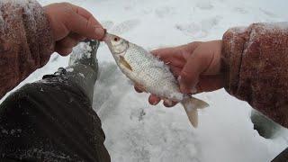 Зимняя рыбалка в снегопад на реке Ловля плотвы