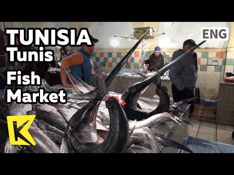 【K】Tunisia Travel-Tunis[튀니지 여행-튀니스]수산시장, 상어 고기와 황새치/Fish Market/Shark Meat/Sword Fish