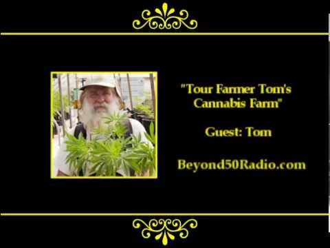 Tour Farmer Tom's Cannabis Farm