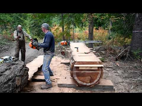 One Hundred Thirty Year Old Douglas fir moves indoors to live on as tribal Great Table