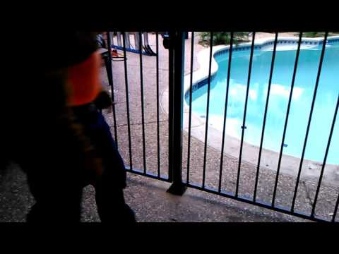 North Texas Welding and Repair, LLC. Swimming pool Barrier Fence