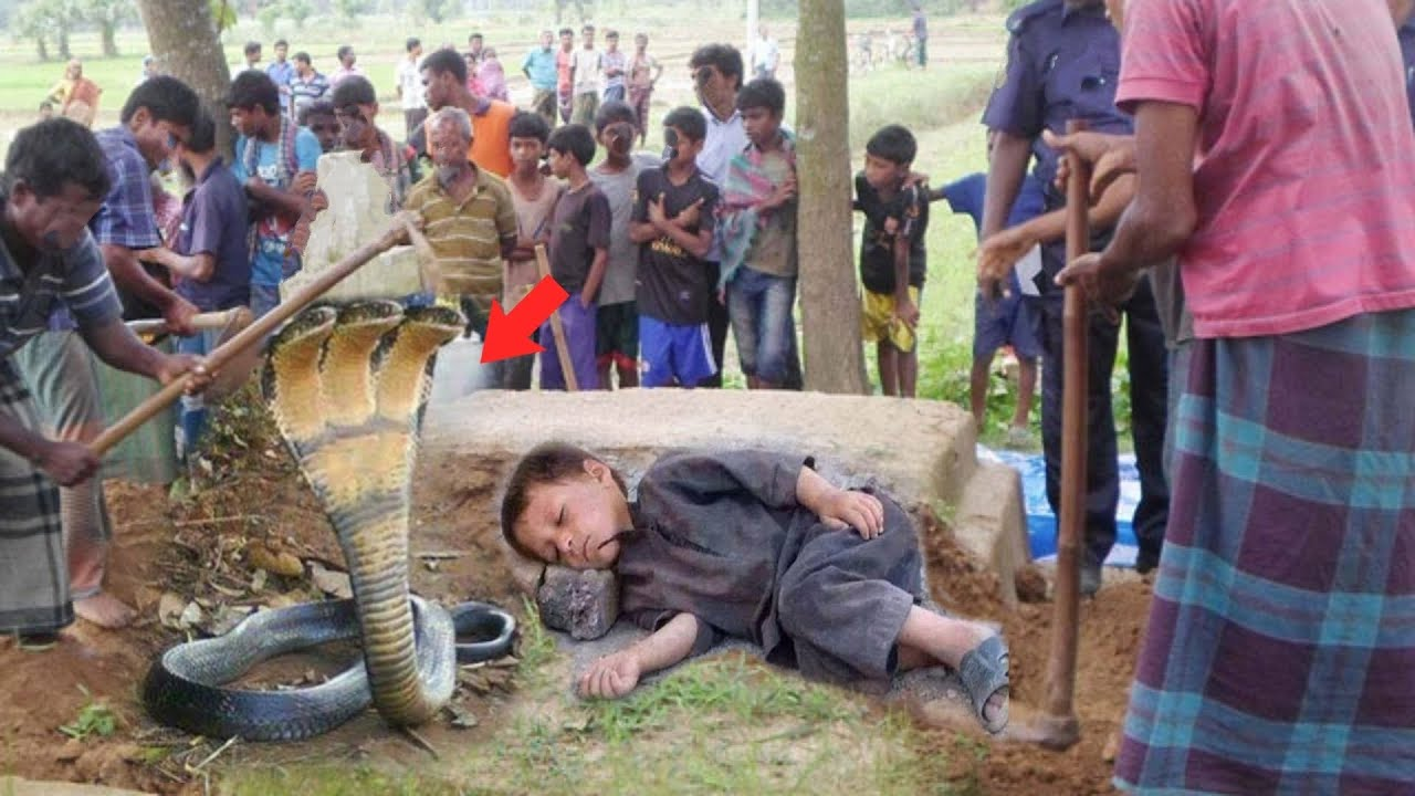 जब नींद में आया एक जहरीला सांप | Hazrat Baba  Bulleh Shah R.A aur Aik Sanp Ka waqia