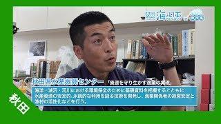 秋田県水産振興センターで働く甲本亮太さん。 小さい頃から川で遊び、魚...